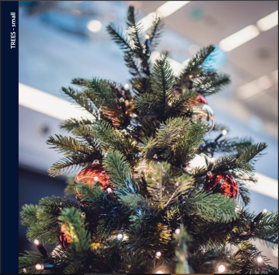 _2020_AJC_Christmas_Trees_and_Greenery